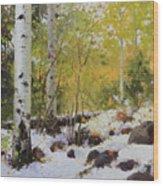 Winter Beauty Sangre De Mountain 2 Wood Print