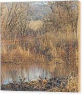 Winter Beaver Dam Charm Co     Wood Print