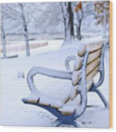 Winter Bench Wood Print