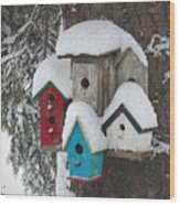 Winter Birdhouses Wood Print