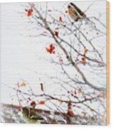 Winter Birds 1 Wood Print
