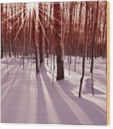 Winter Bling Wood Print