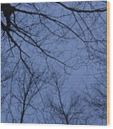 Winter Blue Sky Wood Print