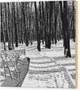 Winter Boardwalk In Black And White Wood Print