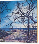 Winter Branches Wood Print