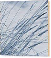 Winter Breeze Wood Print