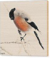 Winter Bullfinch Wood Print