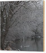 Winter Calm Wood Print
