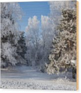 Winter Charm Wood Print