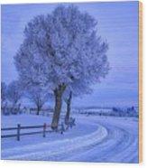 Winter Chill Wood Print