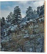 Winter Cliff Wood Print