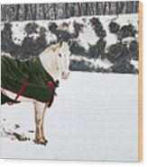Winter Coat Wood Print