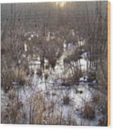 Winter Color Of A Wetland Wood Print
