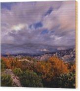 Winter Colors 23 Wood Print