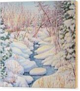 Winter Creek 1  Wood Print