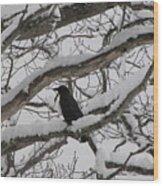 Winter Crow Wood Print
