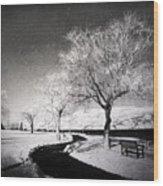 Winter Darkness Wood Print