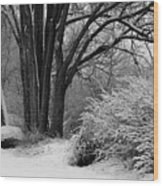 Winter Day - Black And White Wood Print