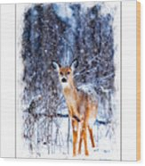 Winter Deer 1 Wood Print