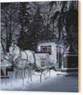 Winter Departure   Wood Print