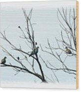 Winter Doves Wood Print