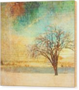 Winter Dreams Wood Print