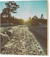 Winter Driveway Sunset Wood Print