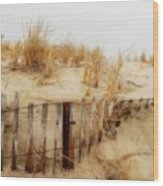 Winter Dune - Jersey Shore Wood Print