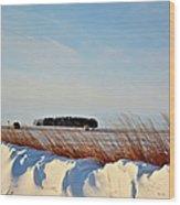 Winter Dunes Wood Print