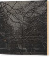 Winter Dusk Wood Print