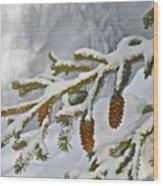 Winter Dusting Wood Print
