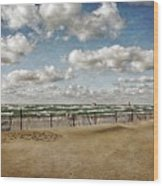 Winter Fences In Grand Haven 3.0 Wood Print