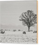Winter Field Wood Print