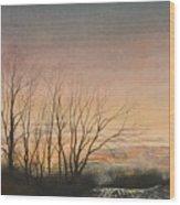 Winter Field Wood Print