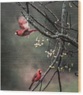 Winter Flight  Wood Print by Kim Loftis