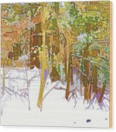 Winter Forest 1 Wood Print