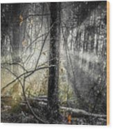 Misty Winter Forest Wood Print