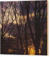 Winter Forest Sunrise Wood Print