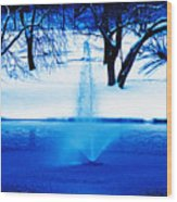 Winter Fountain 2 Wood Print
