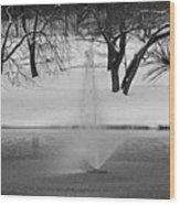 Winter Fountain Wood Print