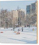 Winter Fun Wood Print