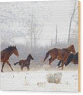 Winter Gallop Wood Print