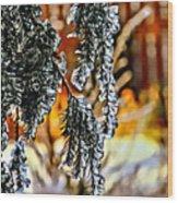 Winter Glow Wood Print