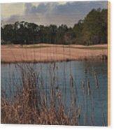 Winter Golfing Wood Print
