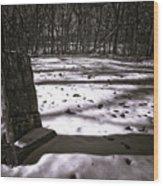 Winter Grave Wood Print