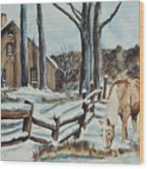 Winter Grazing  Wood Print by Charlotte Blanchard