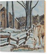 Winter Grazing  Wood Print