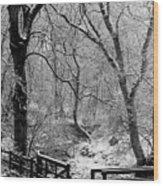 Winter, Ham Burn, Whitley Mill Wood Print