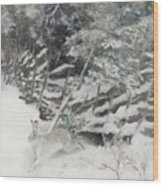 Winter Hare At The Fence Wood Print