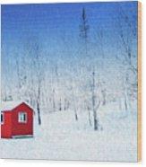 Winter Haven Wood Print
